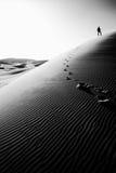 Persona che sta sopra un'alta duna di sabbia nel Sahara, Marocco Fotografia Stock Libera da Diritti