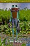 Persona de la rana Foto de archivo