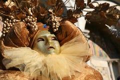 Persona del carnaval de Venecia Fotos de archivo libres de regalías