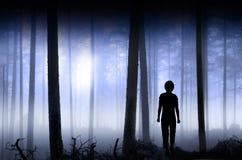 Persona en bosque nebuloso azul Foto de archivo libre de regalías
