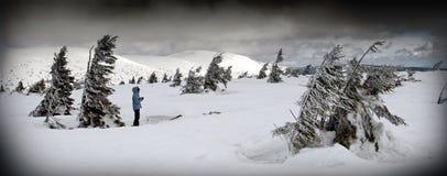 Persona en paisaje ventoso del invierno Foto de archivo