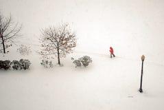 Persona en tormenta de la nieve Imagen de archivo libre de regalías