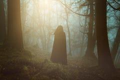 Persona encapuchada negra en un bosque surrealista imagen de archivo