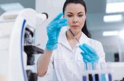 Persona femenina atenta que toma el reactivo en el dropper de la medicina Fotos de archivo libres de regalías