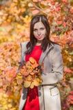 Persona femenina con el ramo de las hojas del otoño que presentan contra arbustos coloridos imagenes de archivo