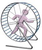 Persona funcionada con en jaula de la rata de la rueda de ardilla Imagen de archivo libre de regalías
