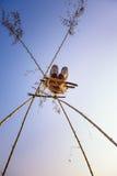 Persona joven que juega en un oscilación de bambú en Nepal Imagen de archivo libre de regalías