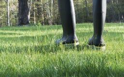 Persona negli stivali del lavoro che cammina nell'erba Fotografia Stock Libera da Diritti