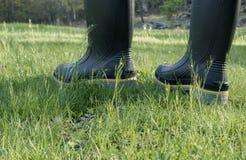 Persona negli stivali del lavoro che cammina nell'erba Immagini Stock