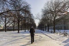 Persona que camina abajo de camino nevoso en Munich Imagen de archivo libre de regalías