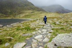 Persona que camina en la trayectoria en el parque nacional de Snowdonia Foto de archivo libre de regalías