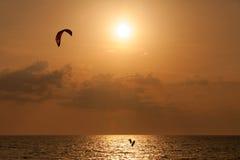 Persona que practica surf de la cometa que salta del agua Fotos de archivo libres de regalías