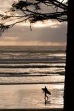 Persona que practica surf de la tarde Imagenes de archivo