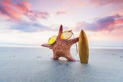 Persona que practica surf de las estrellas de mar en la playa Foto de archivo