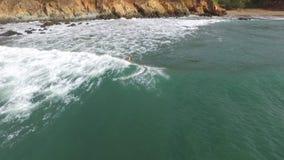Persona que practica surf que practica surf en el agua de la playa de Panamá almacen de video