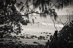 Persona que practica surf en el parque nacional de Noosa Imagenes de archivo