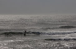 Persona que practica surf en la oscuridad Imagenes de archivo