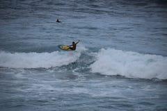 Persona que practica surf en las ondas enormes de Oahu imagen de archivo libre de regalías