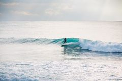 Persona que practica surf en onda azul Invierno que practica surf en el océano Imagen de archivo libre de regalías