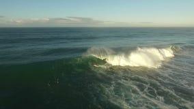 Persona que practica surf en onda grande en San Diego Fotos de archivo libres de regalías
