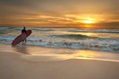 Persona que practica surf que entra en el océano en la salida del sol Fotografía de archivo