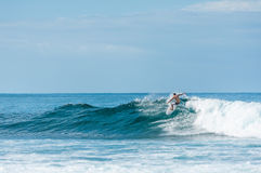 Persona que practica surf que monta las olas oceánicas Fotos de archivo