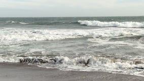 Persona que practica surf que se bate hacia fuera en las olas oceánicas Marin California almacen de video