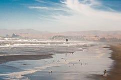 Persona que practica surf solitaria en la playa Imagen de archivo libre de regalías