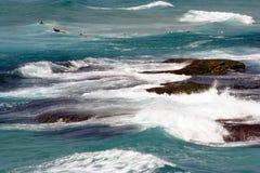 Persona que practica surf Sydney de Australia Foto de archivo