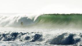 Persona que practica surf y una onda grande Fotos de archivo libres de regalías