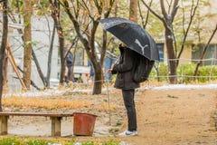 Persona que se coloca debajo de un paraguas Fotografía de archivo