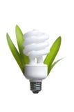 Persona que sostiene un bulbo moderno de la luz verde imágenes de archivo libres de regalías