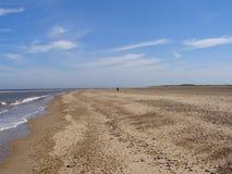 Persona sola en la playa de Mar del Norte Imágenes de archivo libres de regalías