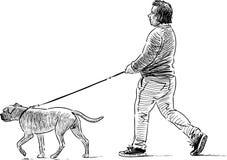 Persona y perro Foto de archivo libre de regalías