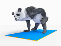 Personage character animal bear panda yoga stretching exercises. Fatty character is struggling with obesity making sport exercises with elastic mattress Stock Image