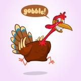 Personaggio dei cartoni animati di fuga della Turchia Illustrazione di vettore di ringraziamento isolata su bianco fotografie stock