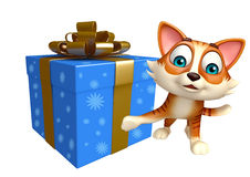 Personaje de dibujos animados del gato de la diversión con la caja de regalo Fotografía de archivo libre de regalías
