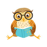 Personaje de dibujos animados Emoji de Owl Reading The Book Cute con Forest Bird Showing Human Emotions y comportamiento Fotos de archivo