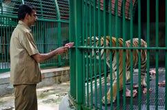 Personal av den stora tigern för zoomatning, Indien Arkivfoton