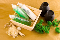 Personal Care Items. Wooden basket with personal care items, scented oil burners and an ornamental plant Stock Image