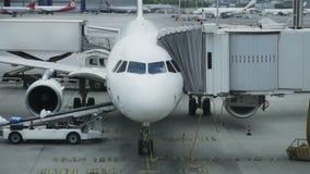 Personal del aeropuerto con equipaje en la banda transportadora del aeroplano El equipaje es cargado en un avión de pasajeros por almacen de video
