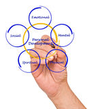 Personal  Development. Presenting Diagram of Personal  Development Royalty Free Stock Images
