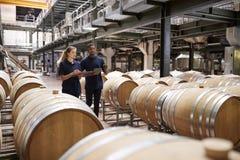 Personal dos que examina barriles en un almacén de la fábrica del vino foto de archivo