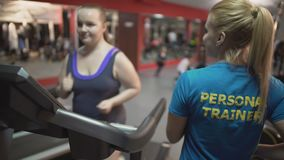 Personal fitness trainer motivating overweight girl during workout, high five. Stock footage stock video