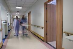Personal hospitalario Imágenes de archivo libres de regalías