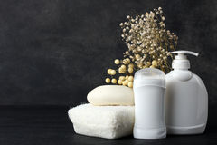 Personal hygiene products. Personal hygiene items with decorative sprigs on a black background Stock Image