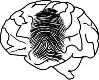 Personal Identity. A fingerprint on a brain Stock Photos