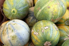Personal Melon. Personal sized melons for sale at local grower's market Royalty Free Stock Photo