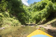Canoeing in the Tropical Rainforest Royalty Free Stock Image