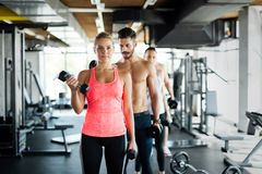 Personal trainer helping young woman with exercises for biceps Stock Photos